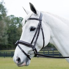 Wellfleet® Contoured Eventing Bridle with Removable Flash by SmartPak