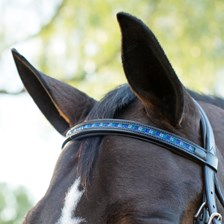 Plymouth® Checkered Stone Browband by SmartPak