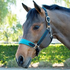 SmartPak Fleece Padded Breakaway Halter -Clearance!