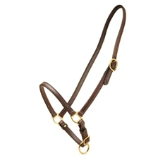 Tory Leather Grooming Halter
