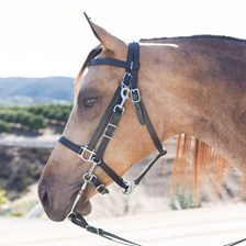 SmartPak Stainless Steel All Weather Combo Bridle