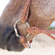 SmartPak Browband Headstall Quick Change