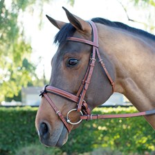 Harwich® Eventing Bridle by SmartPak - Chestnut