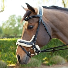 Kavalkade Ergonomic Ivy Bridle with Lambswool