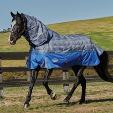 Weatherbeeta ComFiTec Premier Free Detach-A-Neck Turnout Blanket w/ Free Halter - Clearance!
