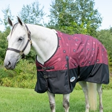 WeatherBeeta ComFiTec Essential Turnout Blanket - Patterned - Clearance!
