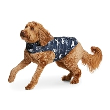 Ariat Pup Puffer Dog Jacket