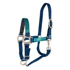 Kensington Padded Halter Made Exclusively For SmartPak