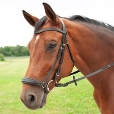 Harwich® Bling Drop Noseband Bridle