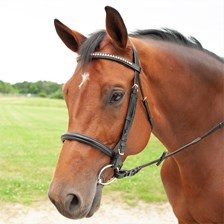 Plymouth® Rose Gold Dressage Bridle by SmartPak