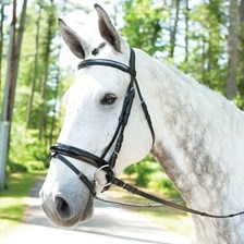 Wellfleet Contoured Chevron Dressage Bridle by SmartPak