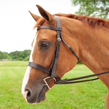 Plymouth® Hunt Bridle by SmartPak