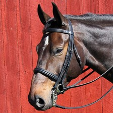 Vespucci Double Raise Weymouth Bridle