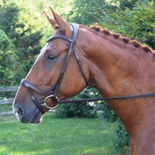 Red Barn Arena Bridle, Snaffle/Flash