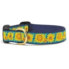 UpCountry® Bright Sunflower Dog Collar