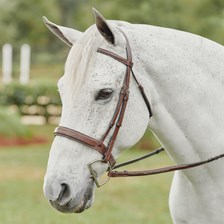 Harwich® Square Raised Hunter Bridle