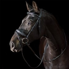 Ovation® ATS Traditional Caveson Dressage Bridle with Flash