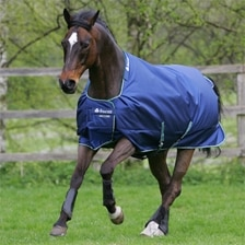 Bucas Smartex Extra Turnout Blanket w/ Free Halter