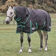 Weatherbeeta Green-Tec Detach-A-Neck Turnout Blanket