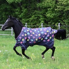Shires Tempest Original Patterned Turnout Blanket - Clearance!