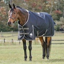 SmartPak Deluxe Turnout Blanket with Earth Friendly Fabric