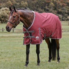 SmartPak Deluxe Turnout Sheet with Earth Friendly Fabric