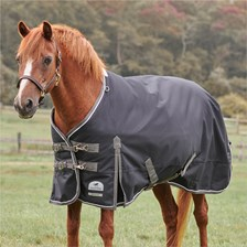 SmartPak Deluxe Pony Turnout Blanket with Earth Friendly Fabric