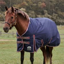 SmartPak Deluxe Pony Turnout Sheet with Earth Friendly Fabric