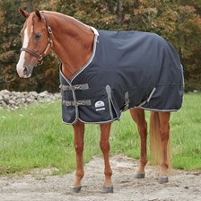 SmartPak Deluxe Stocky Fit Turnout Blanket with Earth Friendly Fabric