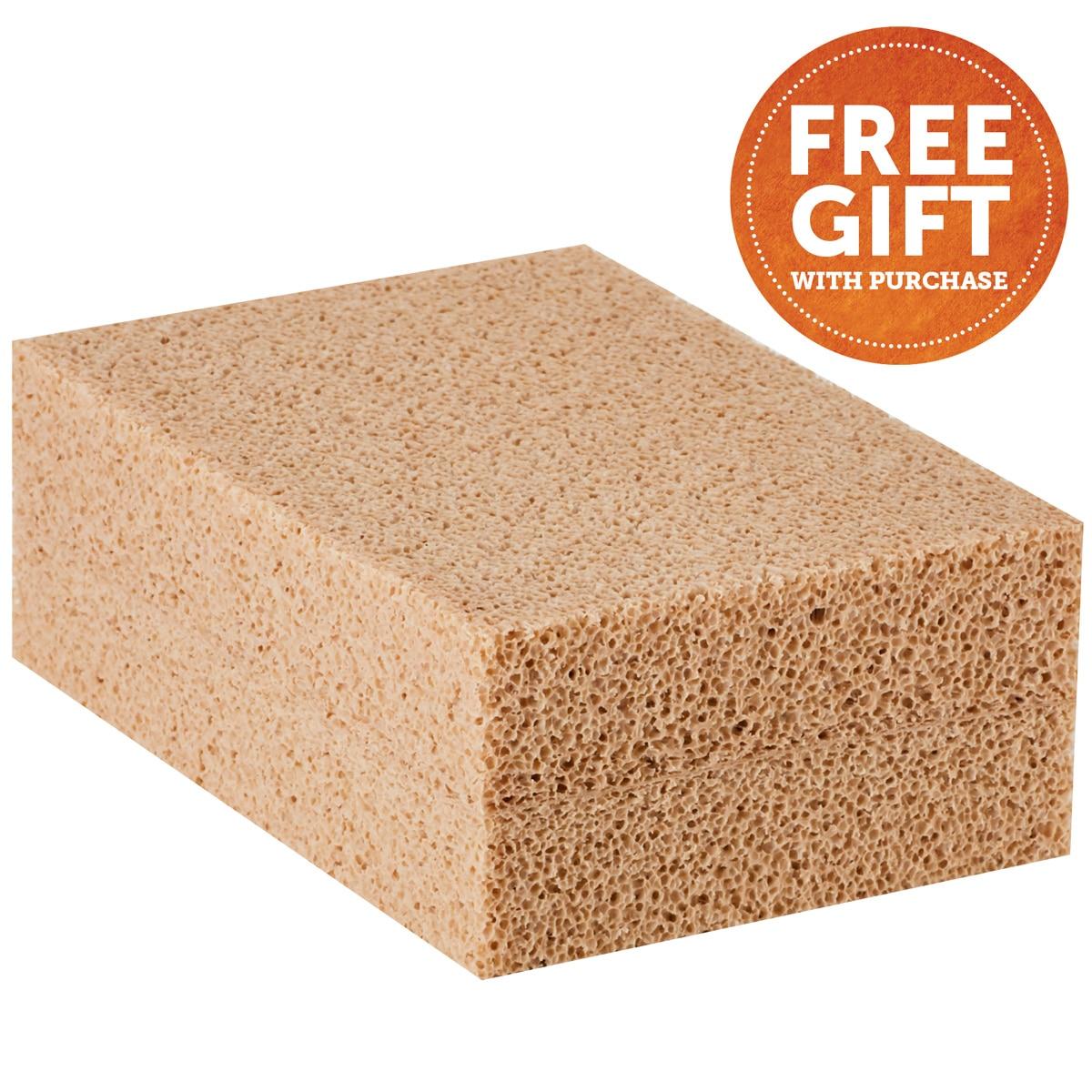 5 Star All Around Pad - FREE Cleaning Sponge