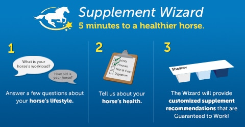 Supplement Wizard - five minutes to a healthier horse. 1. Answer a few questions about your horse's lifestyle.  2. Tell us about your horse's health.  3. The Supplement Wizard will provide customized supplement Recommendations for your horse!
